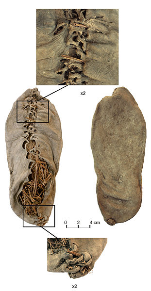 311px-Chalcolithic_leather_shoe_from_Areni-1_cave
