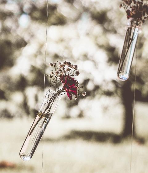 romanticism-2041418_1280