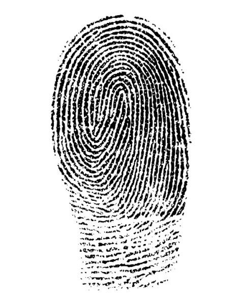 fingerprint-1382652_960_720