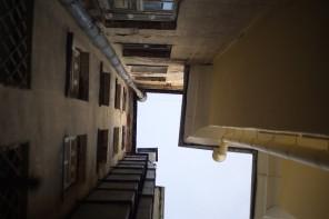 Во станот на Данило Радовиќ