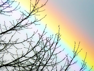 rainbow-1201862_1280